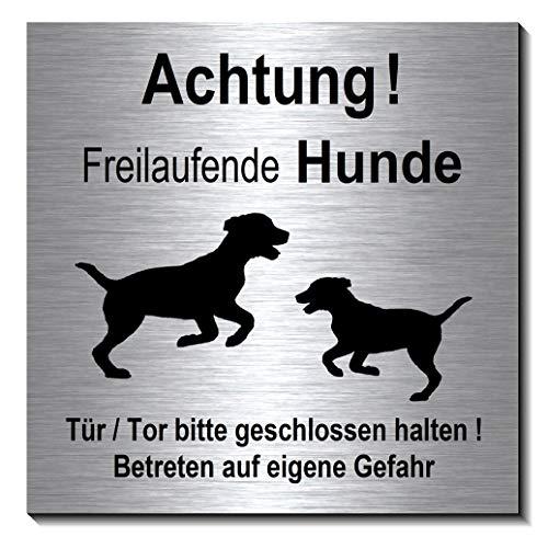 Achtung-Freilaufende-Hunde-Schild 100 x 100 x 3 mm-Aluminium Edelstahloptik silber mattgebürstet Hinweisschild-1910-66