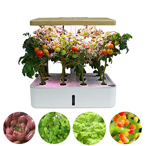 GU YONG TAO Hydroponics Growing System - Indoor Smart LED Plant Grow Light Germination Kit with 12 Pots, Height Adjustable, Indoor Harvest Elite for Fruits, Vegetables, Flower
