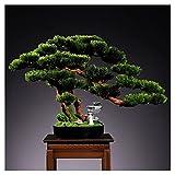Árbol Bonsai Artificial Bienvenido Artificial Pine Bonsai Indoor Fake Plant Adorves Potted Plantas Artificial Piedra Hecho A Mano Cerámica Figuras De Escritorio Adornos De Escritorio Bonsái Decorativo