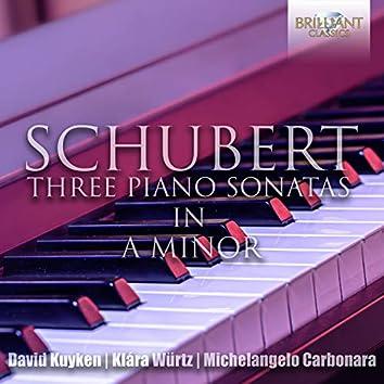 Schubert: The Three Piano Sonatas in A Minor