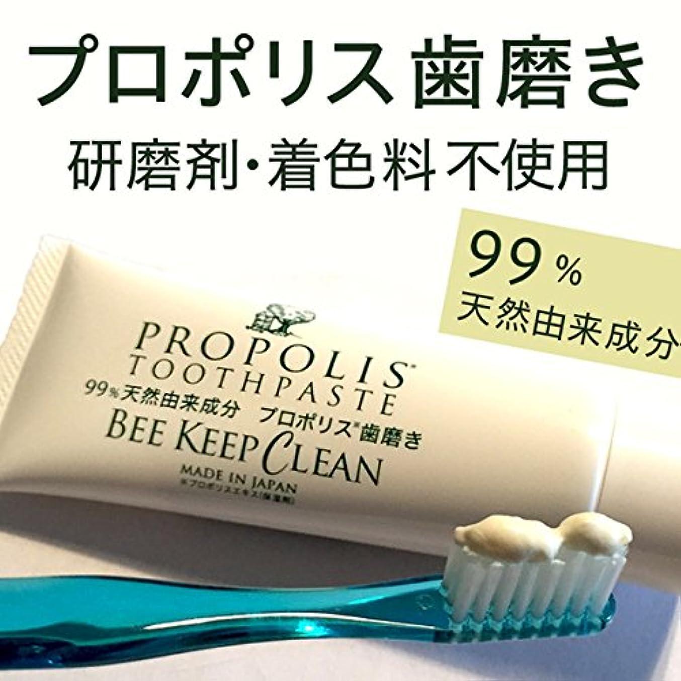 投げ捨てる一致つぼみプロポリス歯磨きビーキープクリーン100g