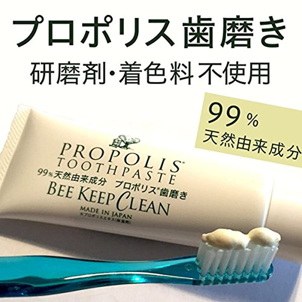 パイント整然としたファイアルプロポリス歯磨きビーキープクリーン100g