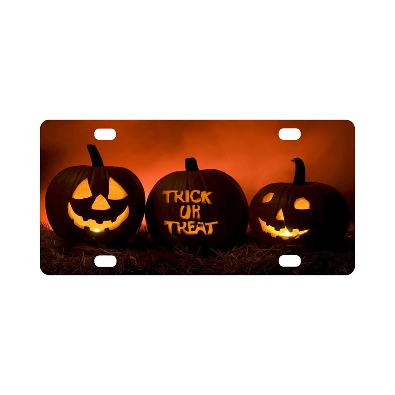 Michalmkeyes The License Plate Covers for Car happy halloween 11.8