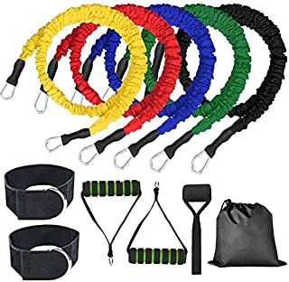 Resistance Bands Set, Exercise Bands Stretch with Door Anchor, Handles, Legs Ankle Straps for Resistance Training, Physica...