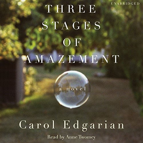 Three Stages of Amazement audiobook cover art