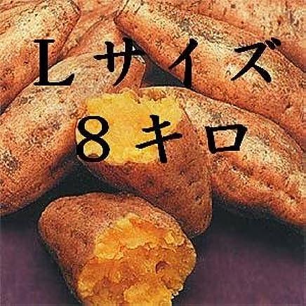 種子島安納芋 Lサイズ8キロ 安納紅