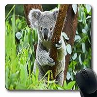 おしゃれスリップ防止マウスパッドファーリーコアラクマヤングズー野生動物楕円形長方形ゲームおしゃれスリップ防止マウスパッド滑り止めラバーマット