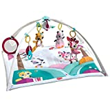 Tiny Love Gymini Deluxe Infant Activity Gym Play Mat, Tiny Princess Tales