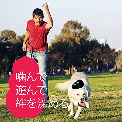 コングジャパン『コングS』