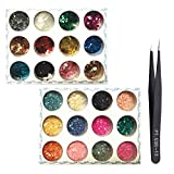 SENDILI Uñas Decorativa Art Pegatinas Kit - Resin Half Circle Beads Decoration for DIY Nail Art Manicure Charm Glitter Dust Powder Tip Decoration 2 Pieces 12 Colors/Set