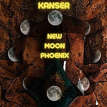 New Moon Phoenix