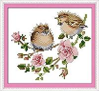 刺繡スターターキット刻印クロスステッチキット初心者簡単な面白いプレプリントパターン16x20インチのDIY11CT刺繡のためにバラで鳥のおしゃべり