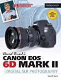David Busch's Canon EOS 6D Mark II Guide to Digital SLR Photography (The David Busch Camera Guide Series)