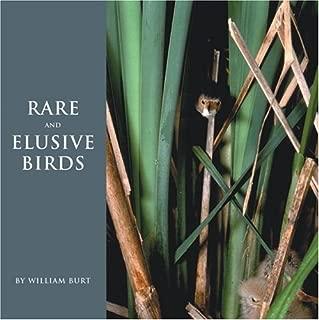 rare and elusive