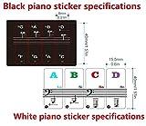 Immagine 2 adesivi per pianoforte trasparenti rimovibili