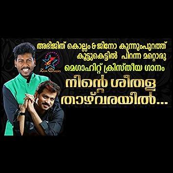 Ninte Seethala Thazhvarayil - Single