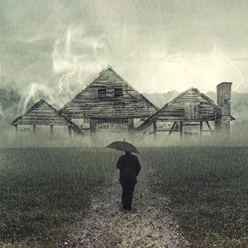 Deep Sleep Music Collective, Nature Sounds Artists & Rain Sound Plus