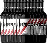 12er Paket - Puro Corte 2018 - Dieter Meier mit VINELLO.weinausgießer   trockener Rotwein   argentinischer Biowein aus Mendoza   12 x 0,75 Liter