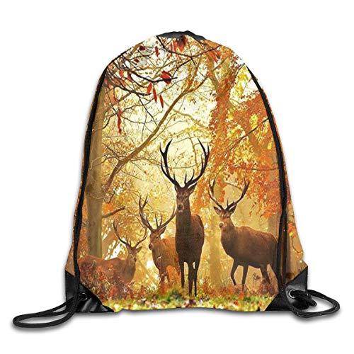 uykjuykj Sac à dos avec cordon de serrage Motif cerfs forêt automne arbre pour gym, randonnée, voyage Couleur 03 Léger Unique 43,6 x 35,6 cm