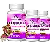 Pack of 3 Forskolin 100% Pure Extra Strength 3000mg (60 Veggie Capsules) for Weight Loss. Natural Keto Diet Pills Targets Stubborn Fat for Women & Men w/20% Standardized Coleus Forskohlii Root Extract