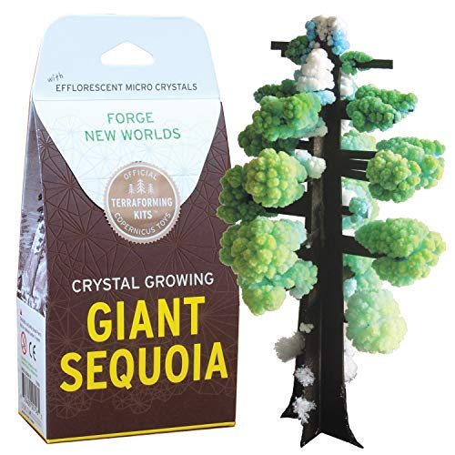 Crystal Growing Giant Sequoia   Copernicus Toys Official Terraformer...