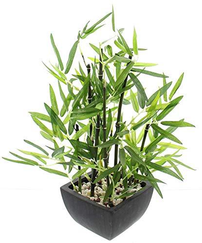 khevga - Planta de bambú decorativa en...
