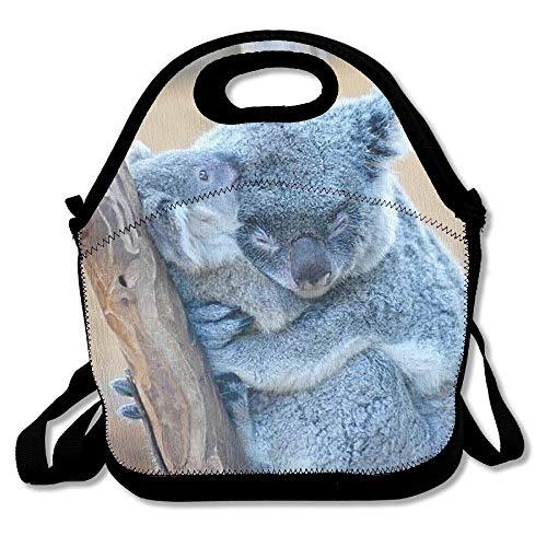Jacklee Lunch Tote Slaperige Koala Lunch Boxen Lunch Tassen Handtas voedsel opslag Past voor School Reizen Werk Outdoor