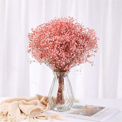 Vase, Kreative Transparente Glasvasen, Einrichtungsgegenstände Moderne Minimalistische Hydroponikvasen Blumenarrangements Trockenvasen 14,5 * 8 * 7 cm