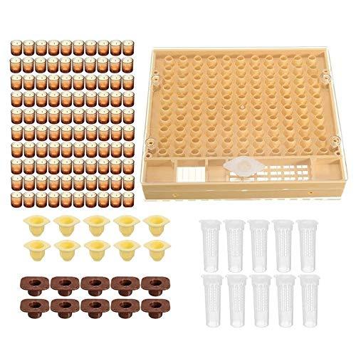 Kit de cría de abejas reina para apicultura, sistema de apicultura de apicultura de apicultura y jaula de abejas