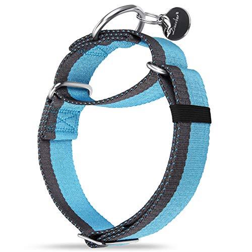 Dazzber 3,8 cm breites gestreiftes Martingale-Halsband, stark und extra dicker, strapazierfähiges Hundehalsband für mittelgroße bis XL-Hunde (groß, 3,8 cm breit, babyblau und grau)