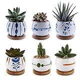 T4U Vaso per Pianta Grassa Vaso di Piante con Vassoio di bambù Bianco 7CM Ceramica Set di 6, Fioriere di Cactus Contenitori Vasi di Fiori Decorativo del Desktop Davanzale Bonsai