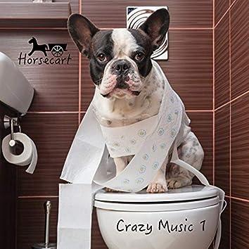 Crazy Music 1