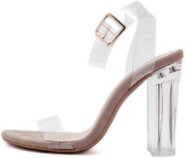 Women's shoes Rubber Spring Summer Novelty Comfort Sandals Walking shoes Chunky Heel Block Heel Translucent Heel Open Toe Buckle Crystal