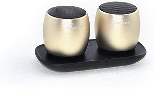 Sardine Metal Subwoofer TWS System Bluetooth Speakers Mini Portable Loudspeaker, F1, Golden