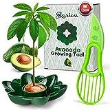 Ekarian Avocado Growing Tool | Regalo per donne | Piante di avocado | Regalo di compleanno | Per coltivare avocado | Taglierina per avocado | Piante