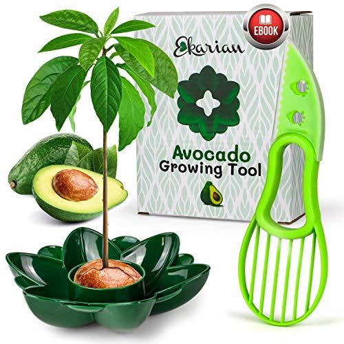 Ekarian Avocado Growing Tool | Geschenke für Frauen | Avocado Pflanzen | Geburtstagsgeschenk | Avocado züchten | Avocado Schneider | Avocadobaum Pflanzen | Ebook