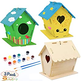 Taquolu Crafts Bird House for Kid DIY Wooden Birdhouse 3 Pack Build and Paint Birdhouse with Paints and Brushes Educational Toys for Girls and Boys Ages 3-4 4-8