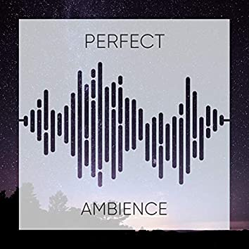 Perfect Ambience, Vol. 23