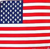 Toalla Estados Unidos de América Bandera Estados Unidos Pañuelo Bandana Pañuelo Toalla de Nicki Aprox. 51x 51cm Impresa por una Cara.