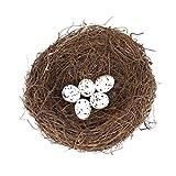 LIOOBO 6 in Nido di Uccelli in Rattan Pasquale con 5 Uova Maculate Nido di Uccelli Natural...
