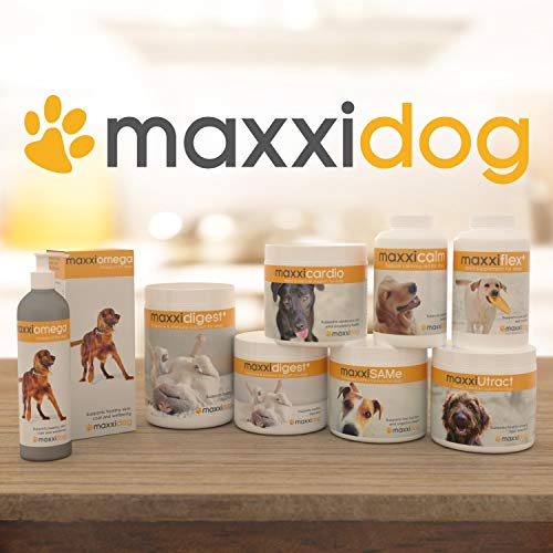 maxxipaws maxxiflex+ Hip and Joint Supplement for Dogs - 120 Chewable Tablets