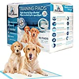 PetCellence Puppy Training Pads 50 Pack - Large 60 cm x 60 cm - Dog Urine Pads for Car Seat, Dog Bed, Food Bowls, Litter Box and Crate - Leak-Proof Floor Protection Mat for Incontinent Puppies