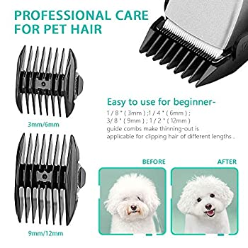 Acapetty Tondeuse électrique pour chien et animal domestique silencieuse rechargeable sans fil avec ciseaux de toilettage et peigne pour chiens et chats