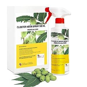 CLOSTER® Spray de Aceite de Neem Nuevo 2020 Insecticida Natural para Plantas en Jardín y Balcón contra Pulgones Chinches Piojos Araña Cochinilla Desinfestante ecológico (Spray 500ML Listo para Usar)