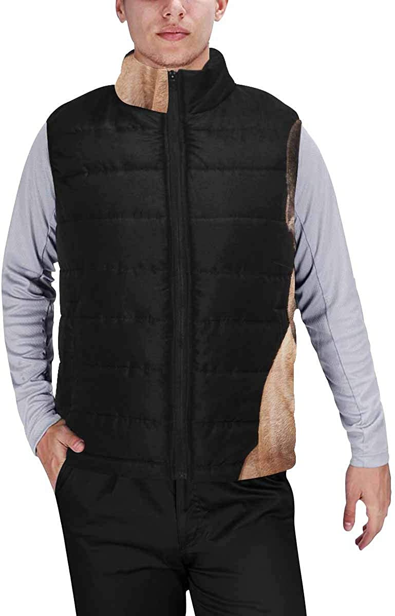 InterestPrint Winter Outwear Casual Padded Vest Coats for Men Forest Fir Tree, Chestnut, Snowflakes