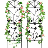 MIXXIDEA 64'x17' Metal Garden Trellis for Climbing Plants Rustproof...