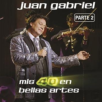 Mis 40 En Bellas Artes (En Vivo Desde Bellas Artes, México/ 2013/ Parte 2)