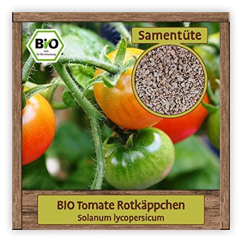 BIO Tomaten Samen Balkontomate Saatgut Gemüsesamen Sorte Rotkäppchen