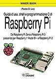 Guida d'uso, shell e programmazione C di Raspberry Pi