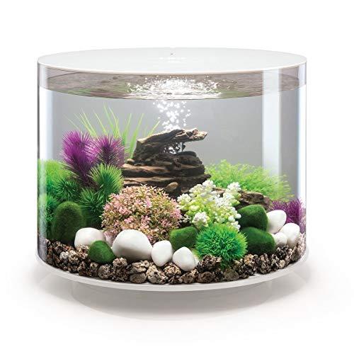 Rundes Aquarium von BiOrb, 35 l mit LED-Beleuchtung
